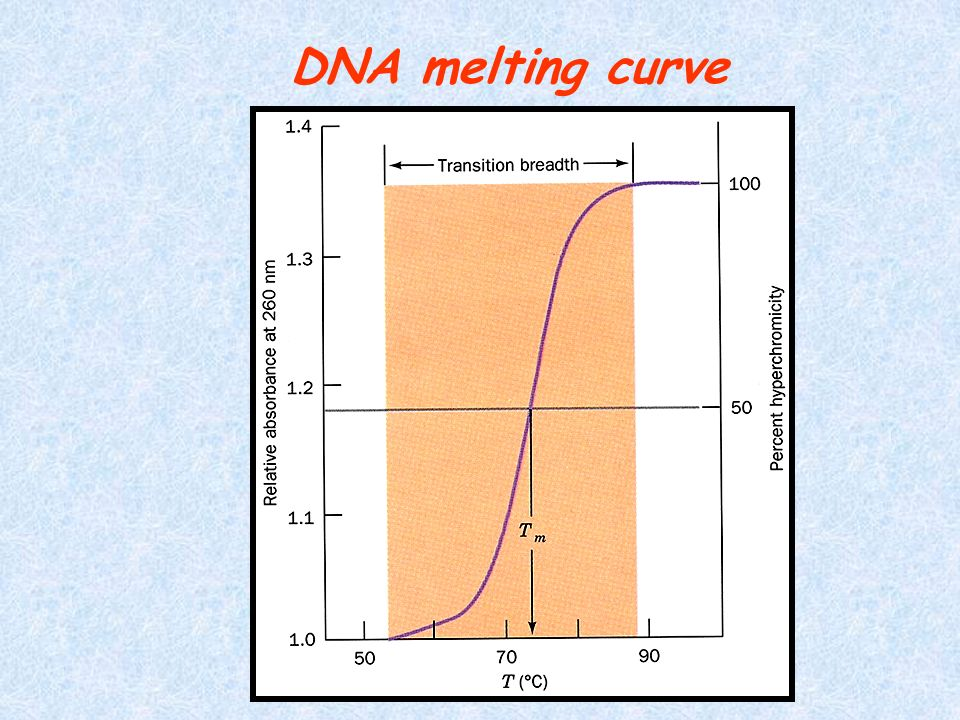 DNA melting curve