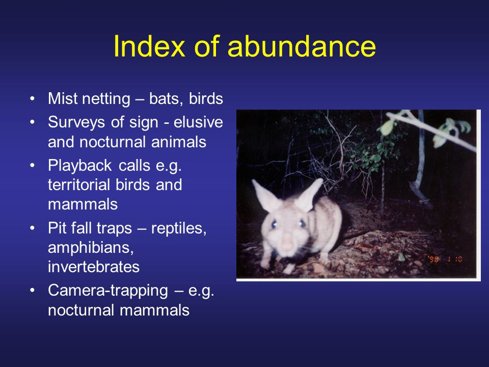Index of abundance Mist netting – bats, birds