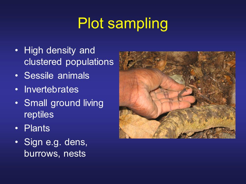 Plot sampling High density and clustered populations Sessile animals