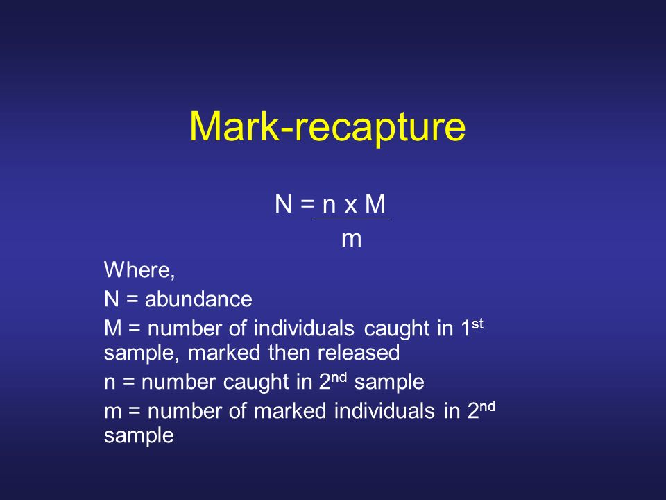 Mark-recapture N = n x M m Where, N = abundance