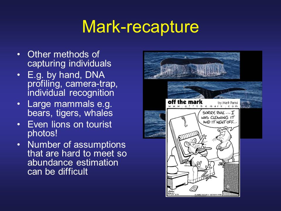 Mark-recapture Other methods of capturing individuals
