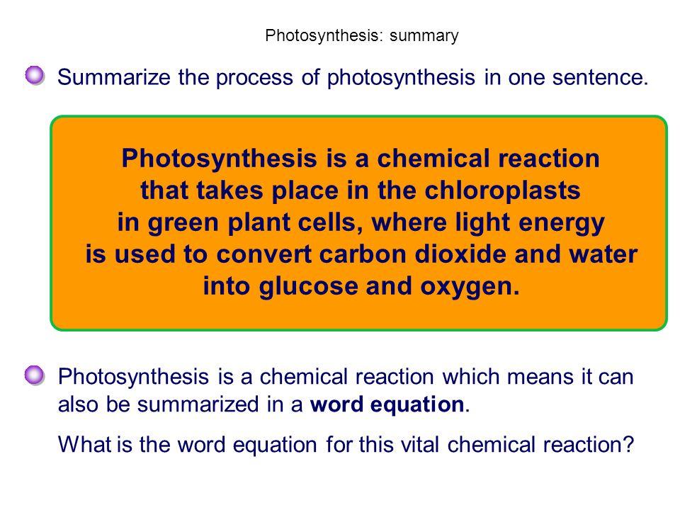 Photosynthesis: summary