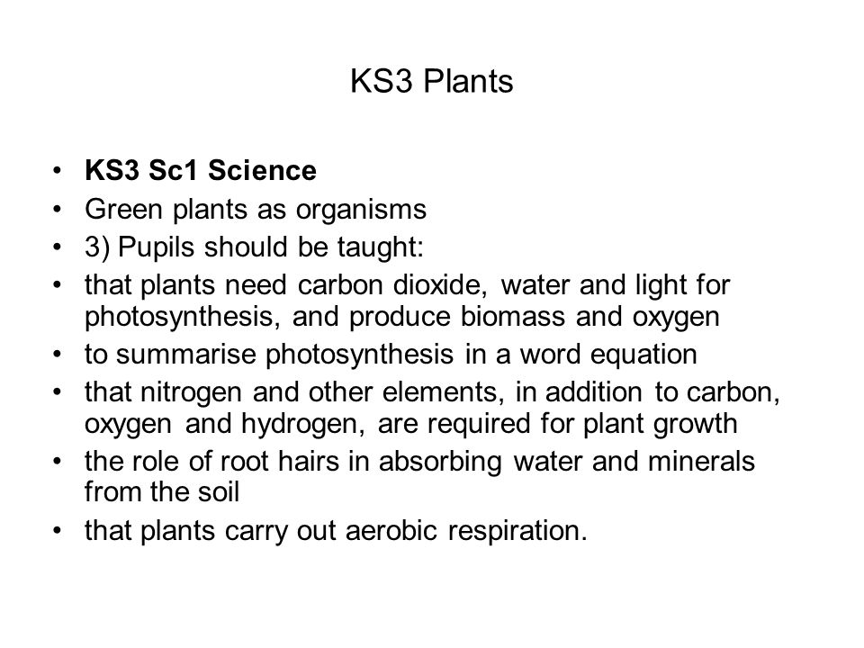KS3 Plants KS3 Sc1 Science Green plants as organisms