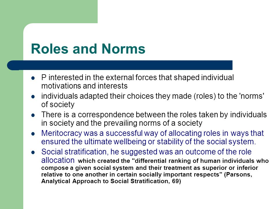 Roles and Norms P interested in the external forces that shaped individual motivations and interests.