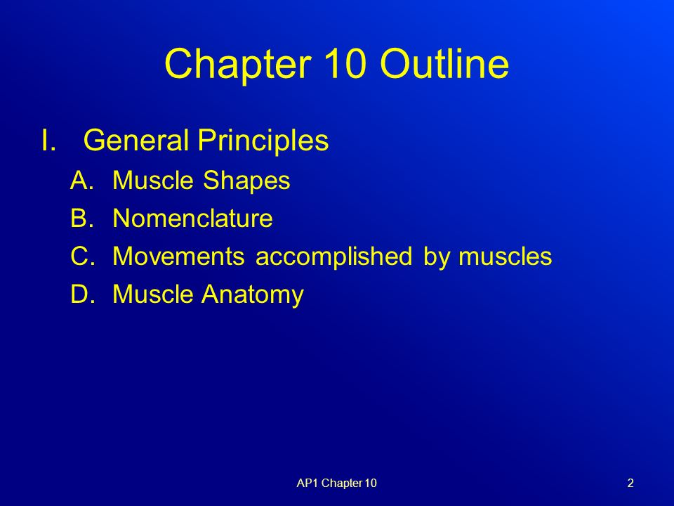muscular system: gross anatomy - ppt video online download, Muscles