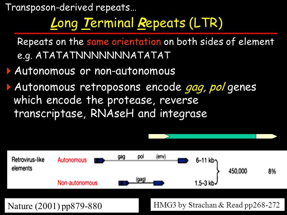 Long Terminal Repeats (LTR)