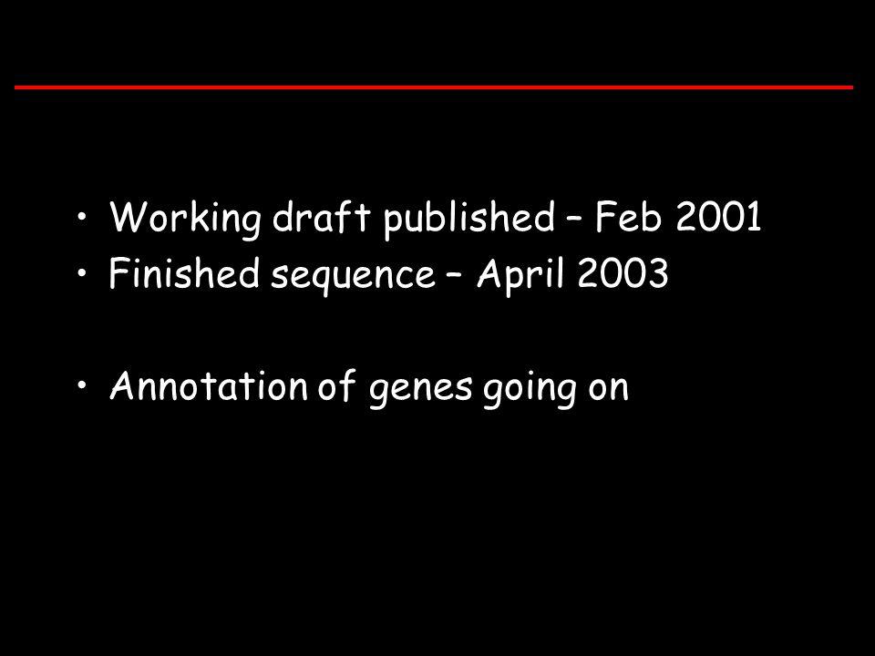 Working draft published – Feb 2001