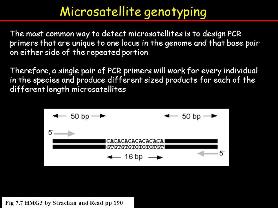 Microsatellite genotyping