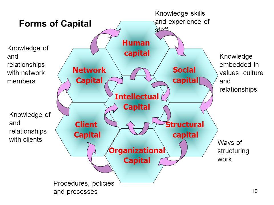 Forms of Capital Human capital Network Capital Social capital