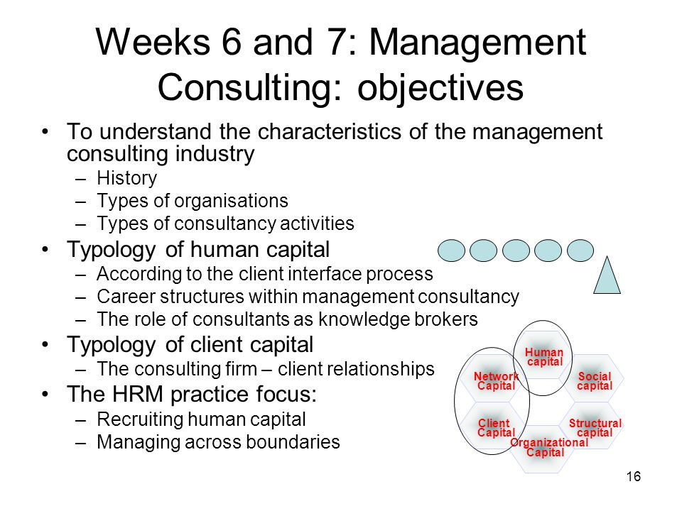 Weeks 6 and 7: Management Consulting: objectives