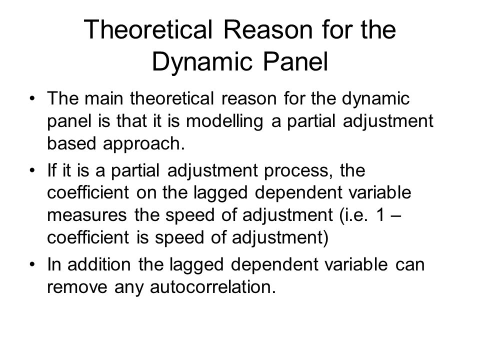 Theoretical Reason for the Dynamic Panel