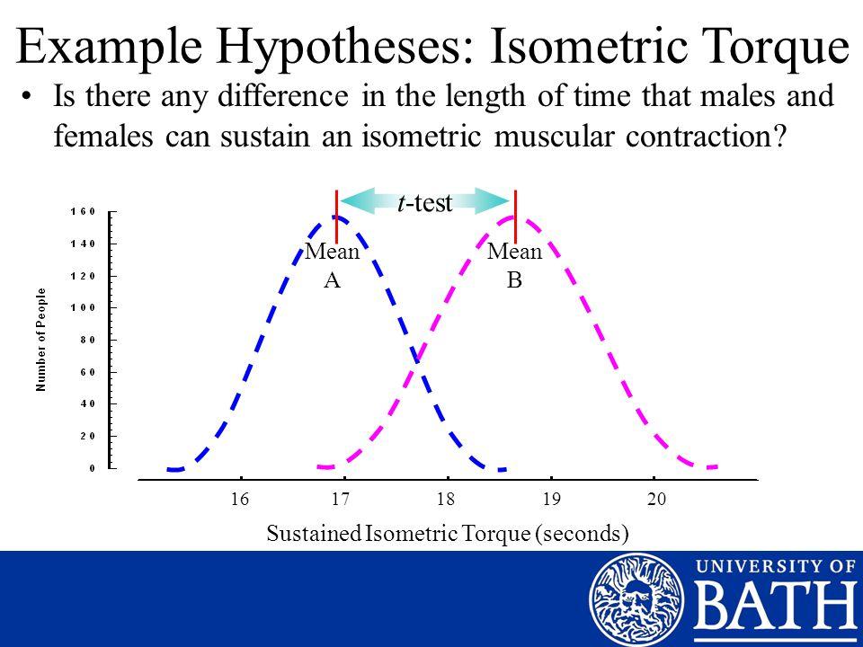Example Hypotheses: Isometric Torque