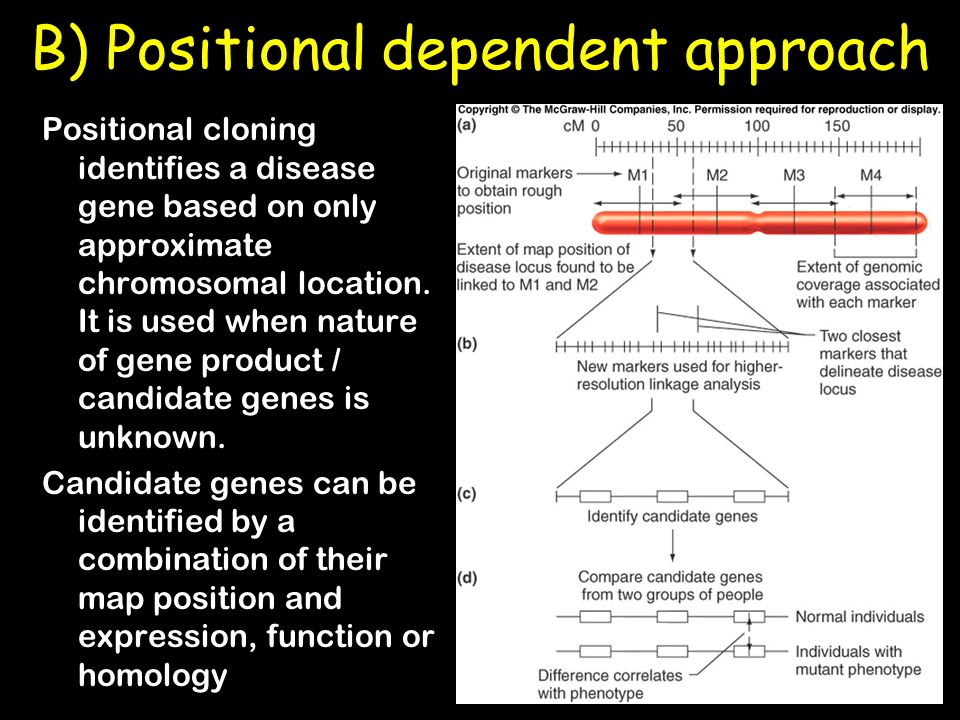 B) Positional dependent approach