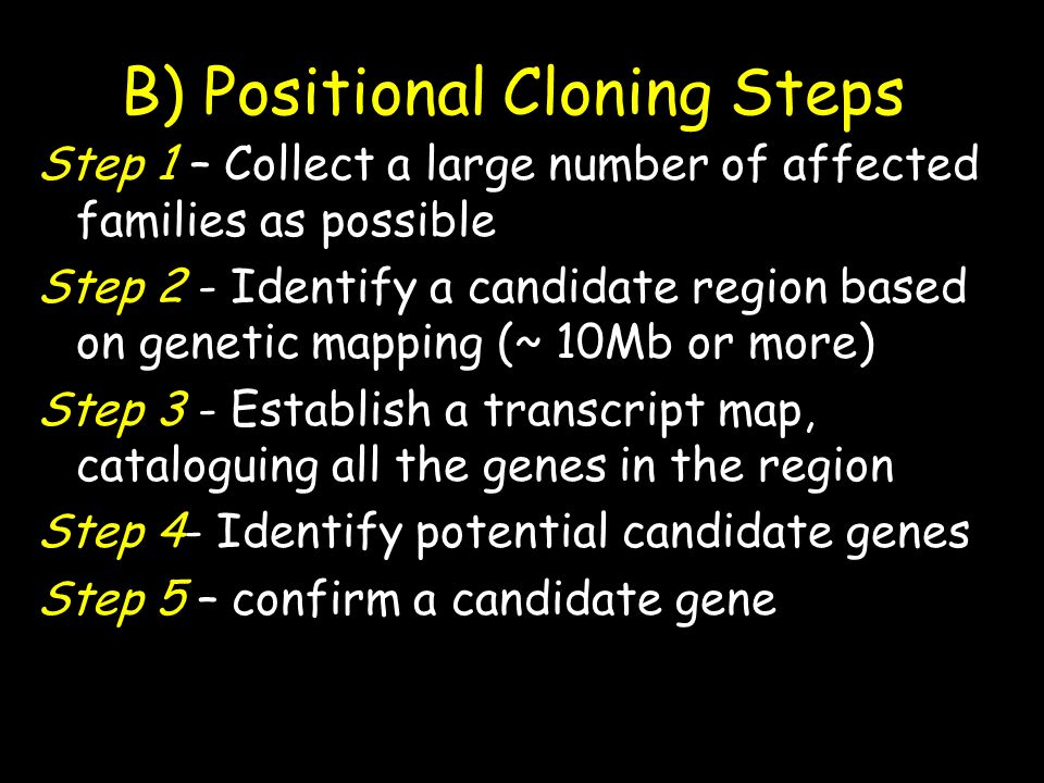 B) Positional Cloning Steps