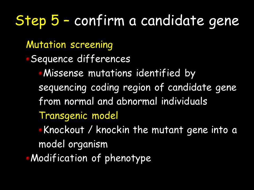 Step 5 – confirm a candidate gene