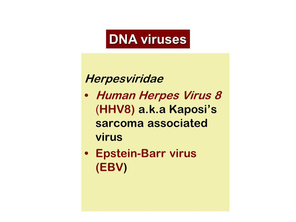 DNA viruses Herpesviridae