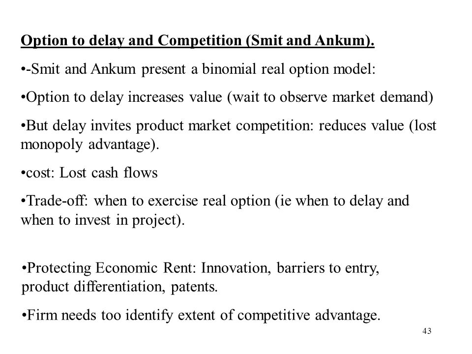 Option to delay and Competition (Smit and Ankum).