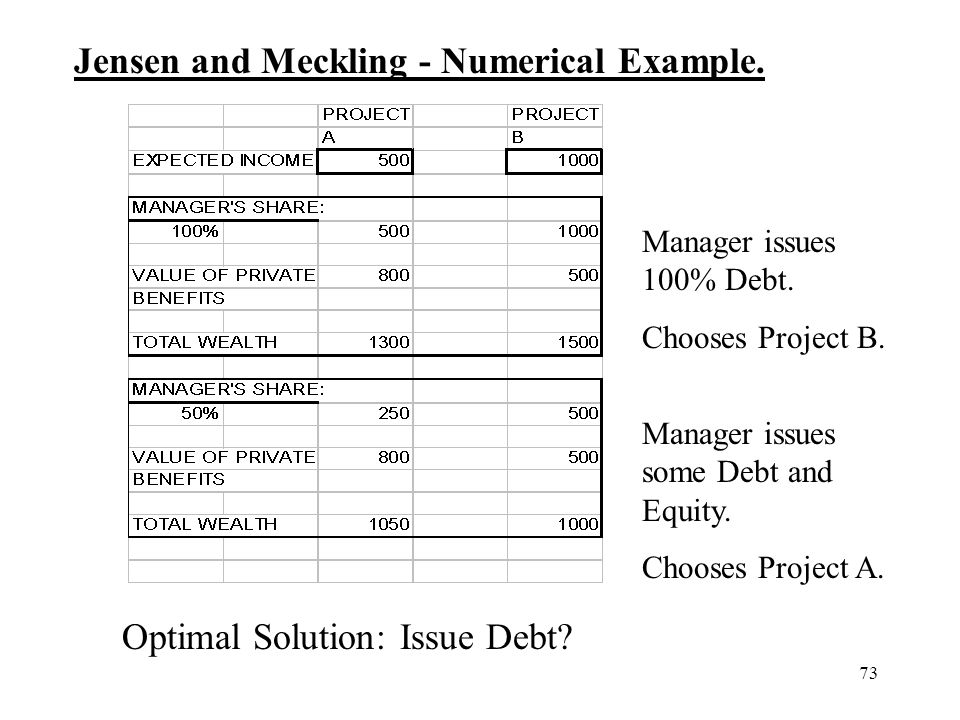 Jensen and Meckling - Numerical Example.