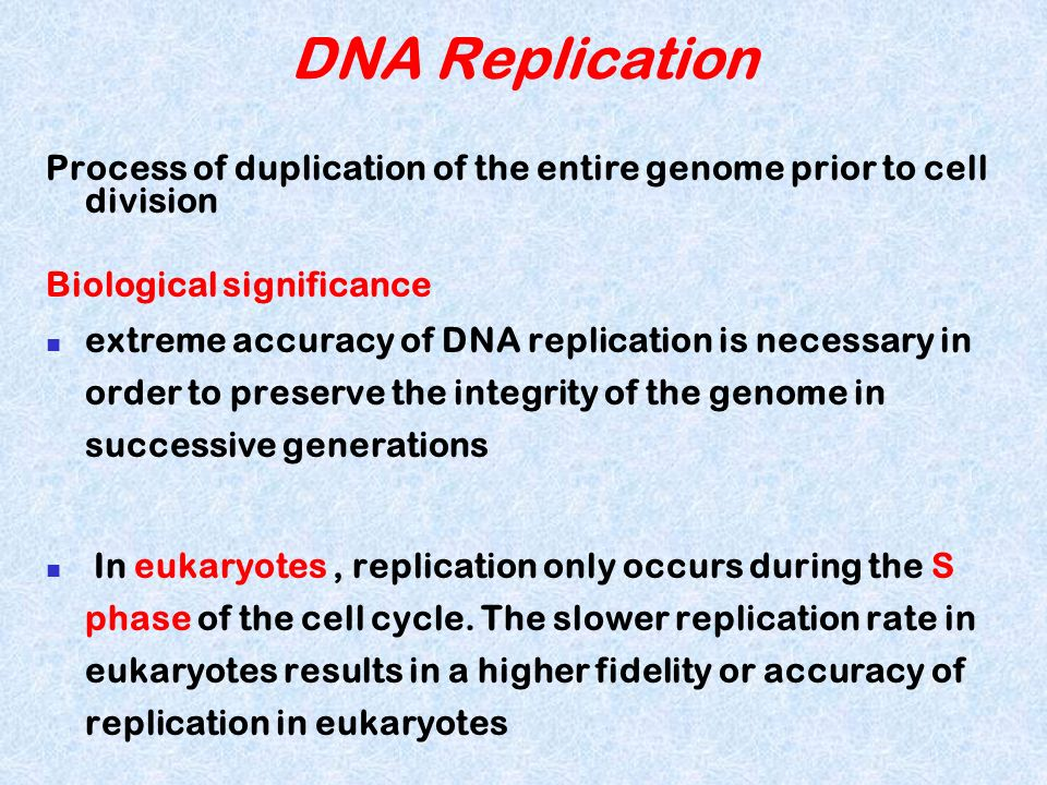 DNA ReplicationProcess of duplication of the entire genome prior to cell division. Biological significance.