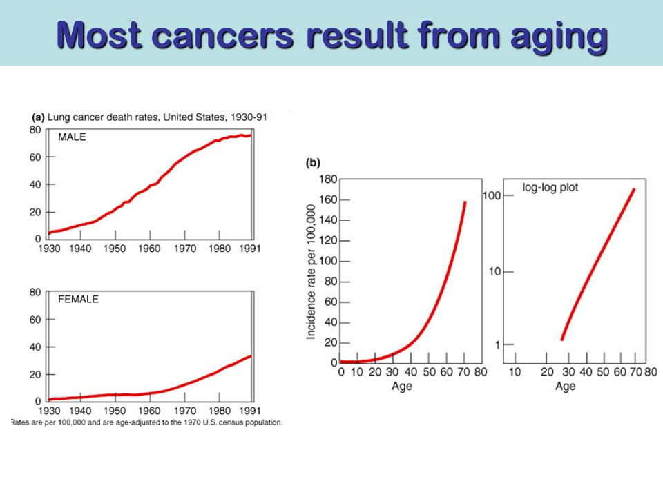 Most cancers result from aging