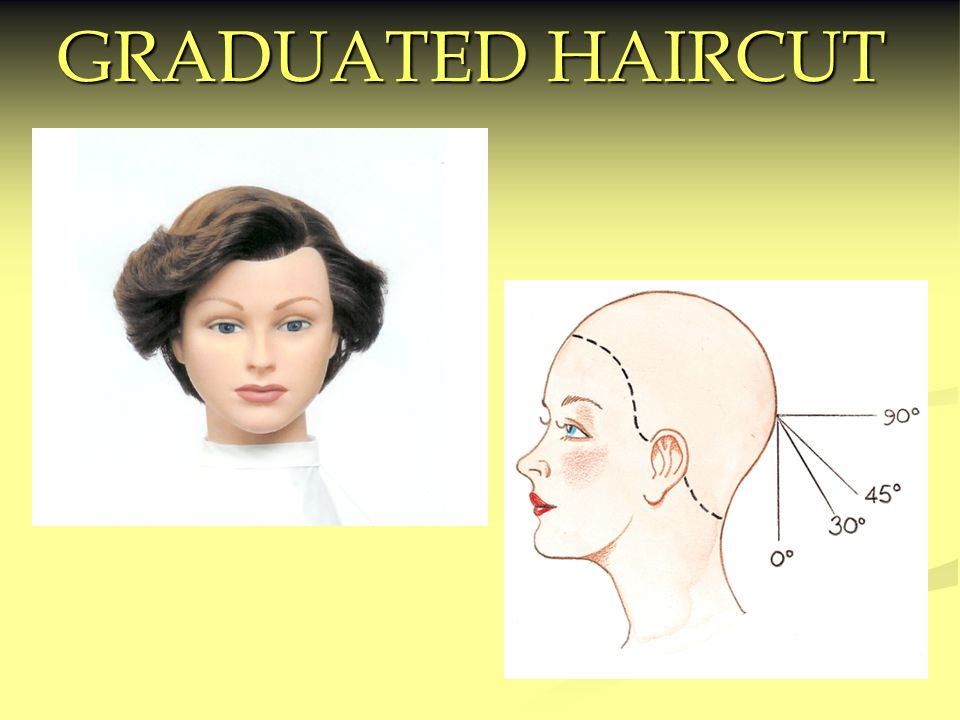 Graduated Haircut Ppt Video Online Download