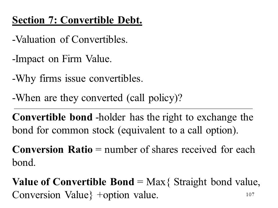 Section 7: Convertible Debt.