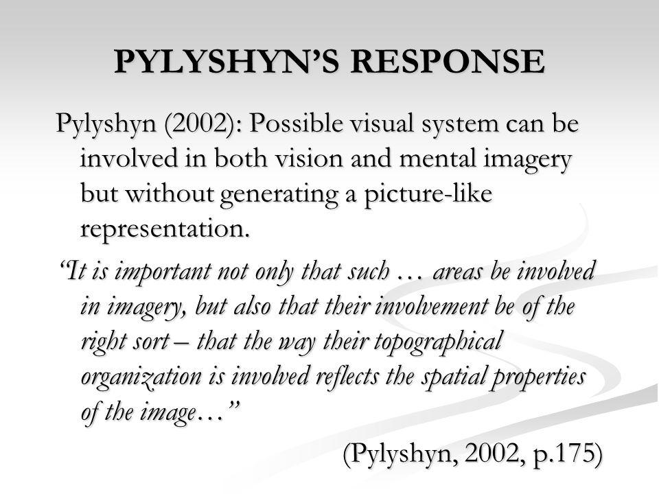 PYLYSHYN'S RESPONSE
