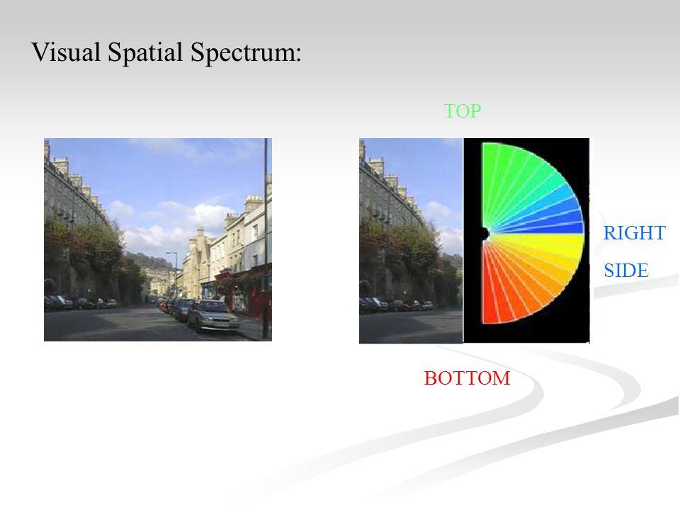Visual Spatial Spectrum: