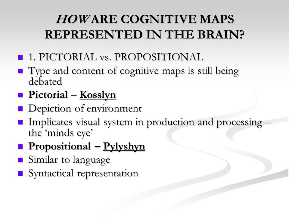 HOW ARE COGNITIVE MAPS REPRESENTED IN THE BRAIN