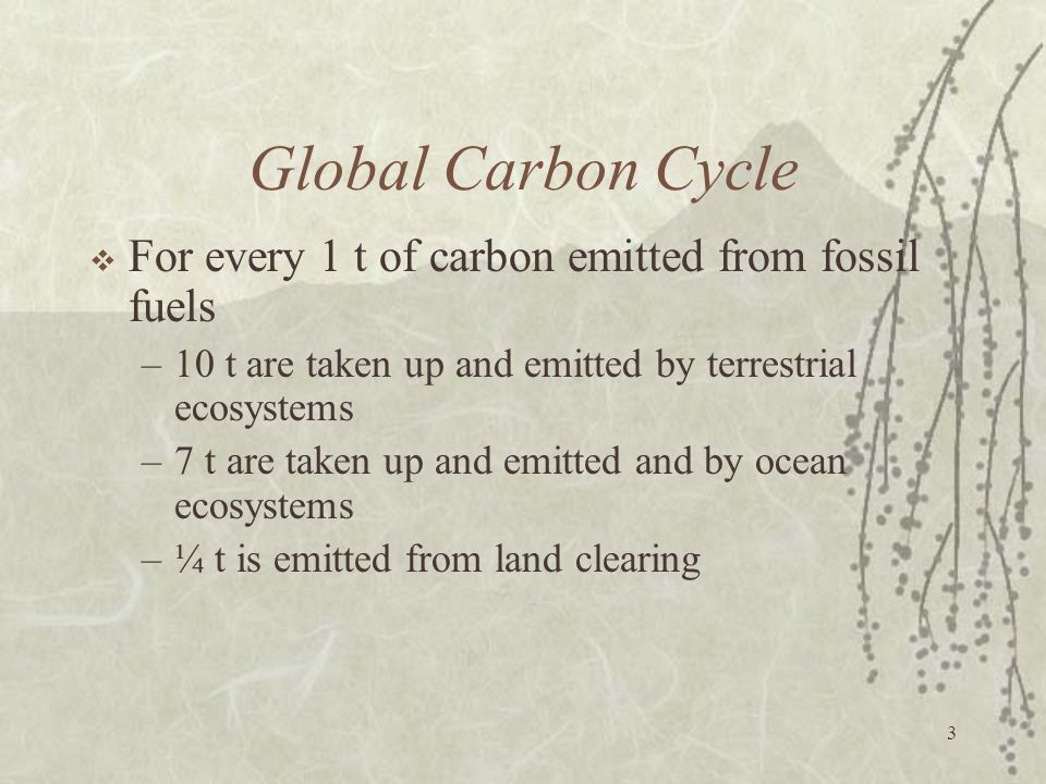 Global Carbon Cycle For every 1 t of carbon emitted from fossil fuels