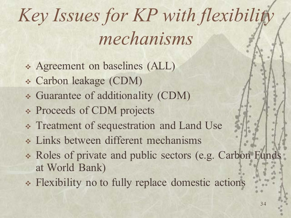 Key Issues for KP with flexibility mechanisms