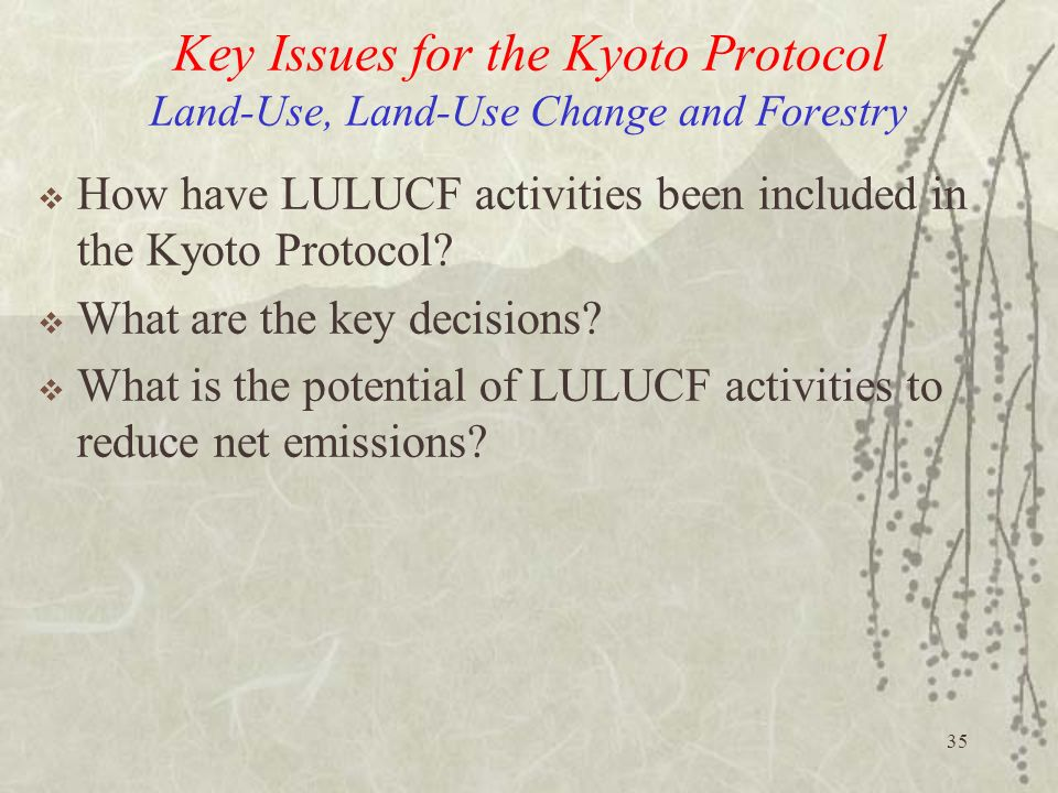Key Issues for the Kyoto Protocol Land-Use, Land-Use Change and Forestry