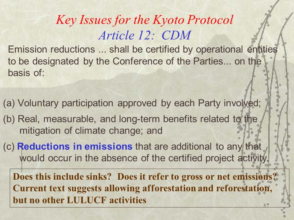 Key Issues for the Kyoto Protocol Article 12: CDM