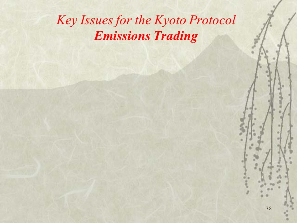 Key Issues for the Kyoto Protocol Emissions Trading