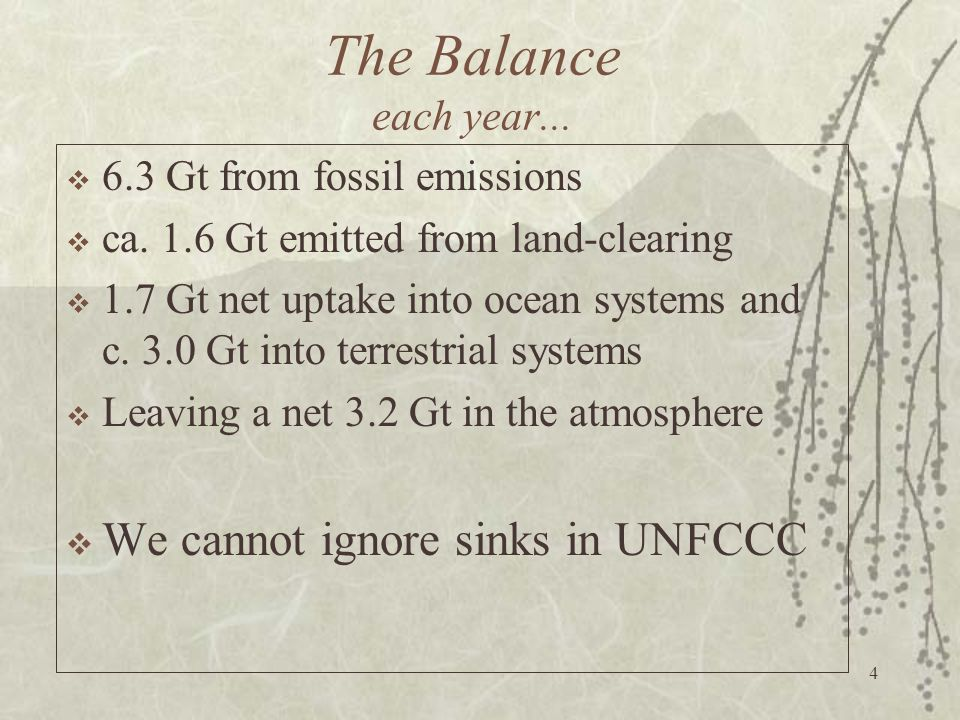 The Balance each year... We cannot ignore sinks in UNFCCC