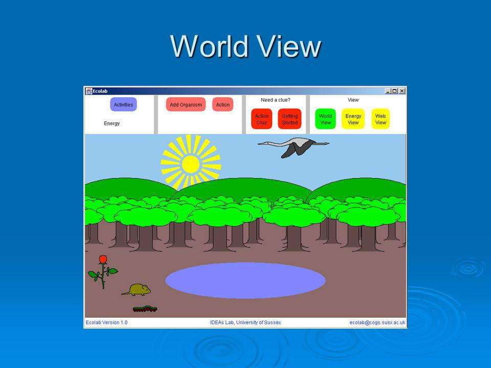 World View World view shows a picture of the organisms