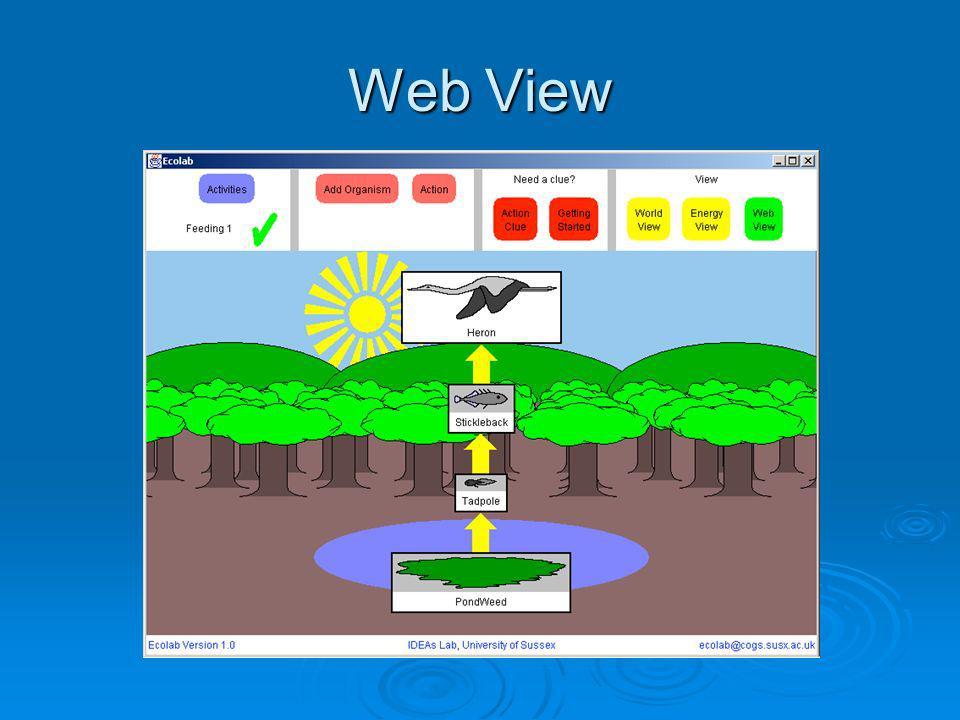 Web View