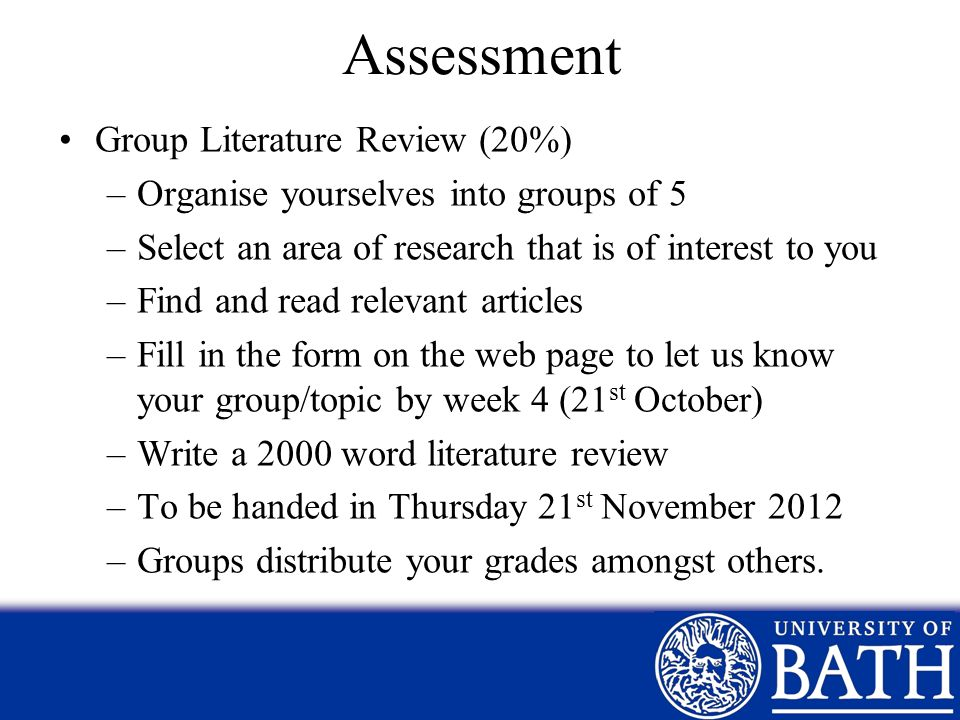 Assessment Group Literature Review (20%)