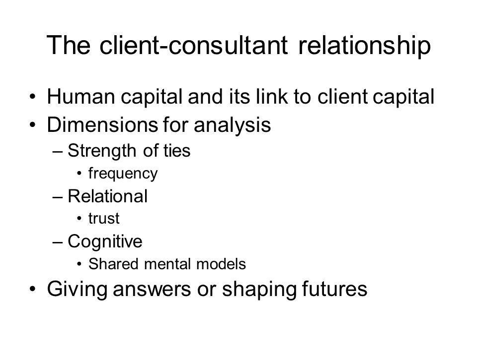 The client-consultant relationship