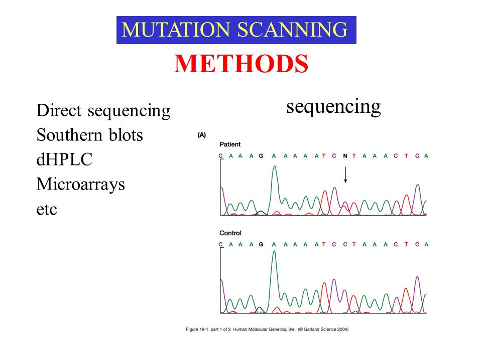 METHODS MUTATION SCANNING sequencing Direct sequencing Southern blots