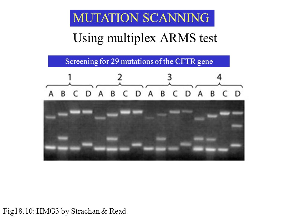 Using multiplex ARMS test