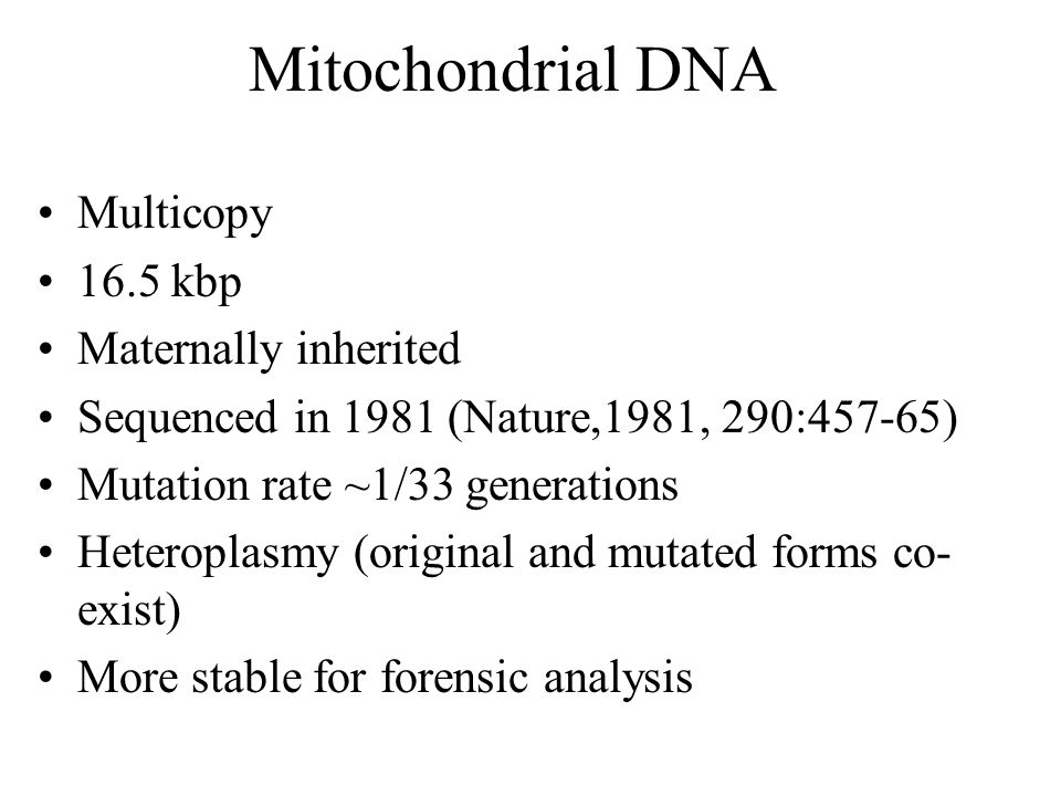 Mitochondrial DNA Multicopy 16.5 kbp Maternally inherited