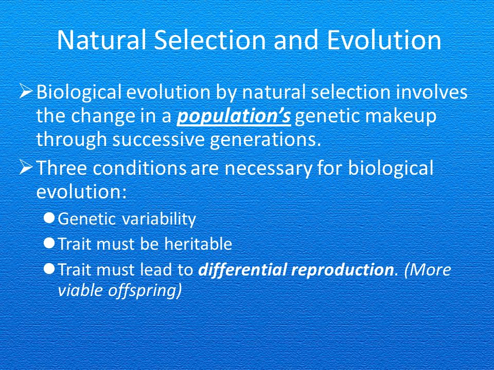 Can Natural Selection Lead To Evolution