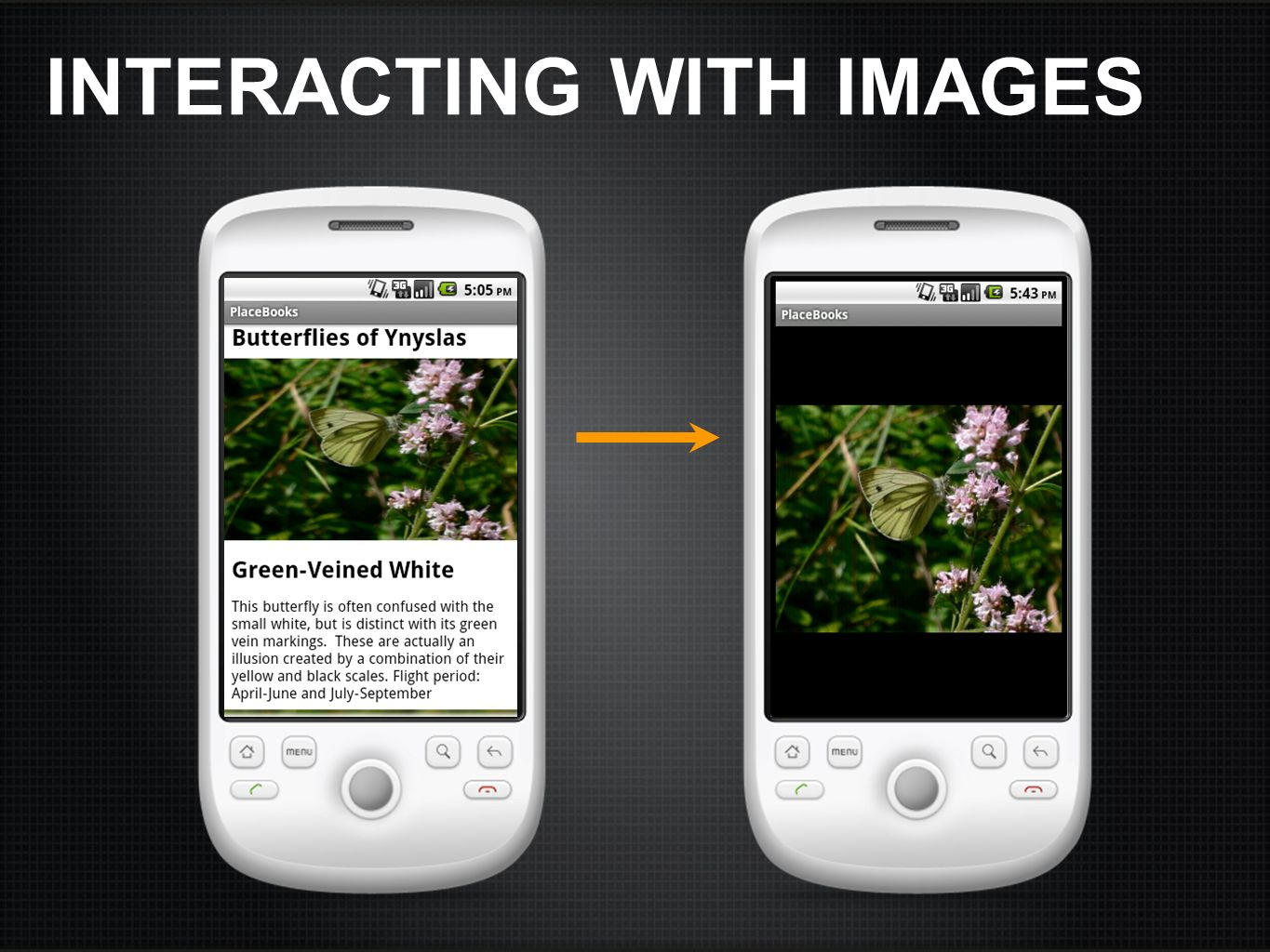 INTERACTING WITH IMAGES
