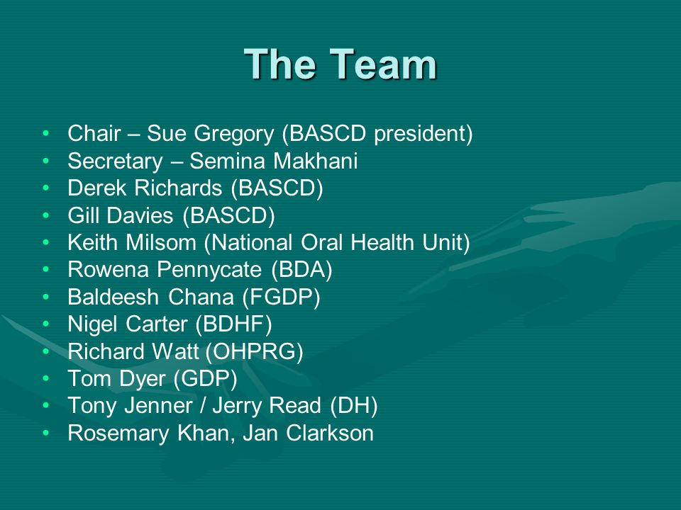 The Team Chair – Sue Gregory (BASCD president)