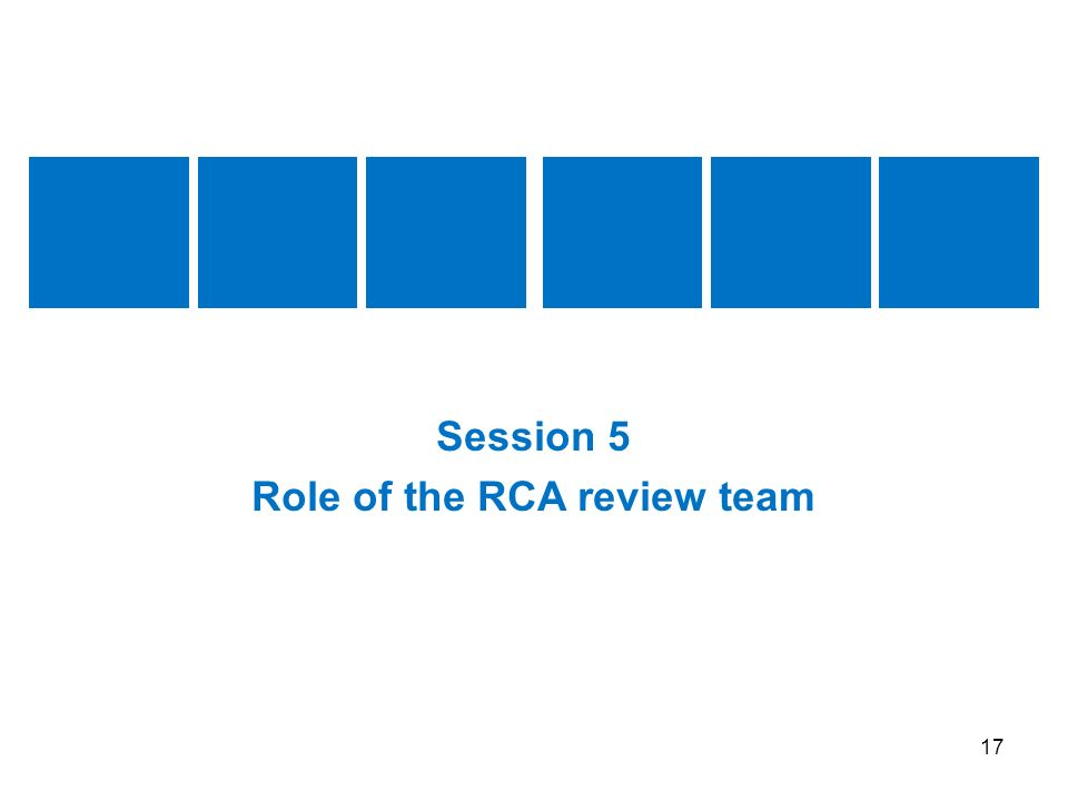Role of the RCA review team