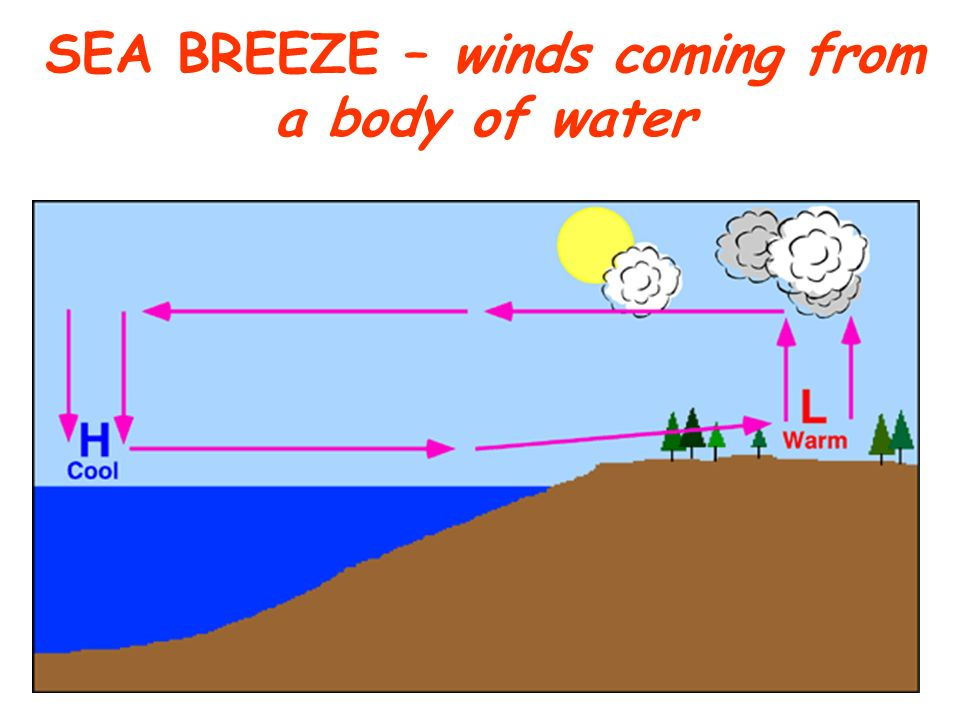 SEA BREEZE – winds coming from a body of water
