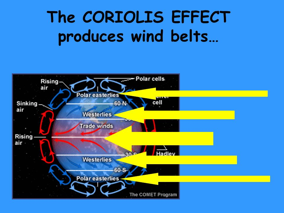The CORIOLIS EFFECT produces wind belts…