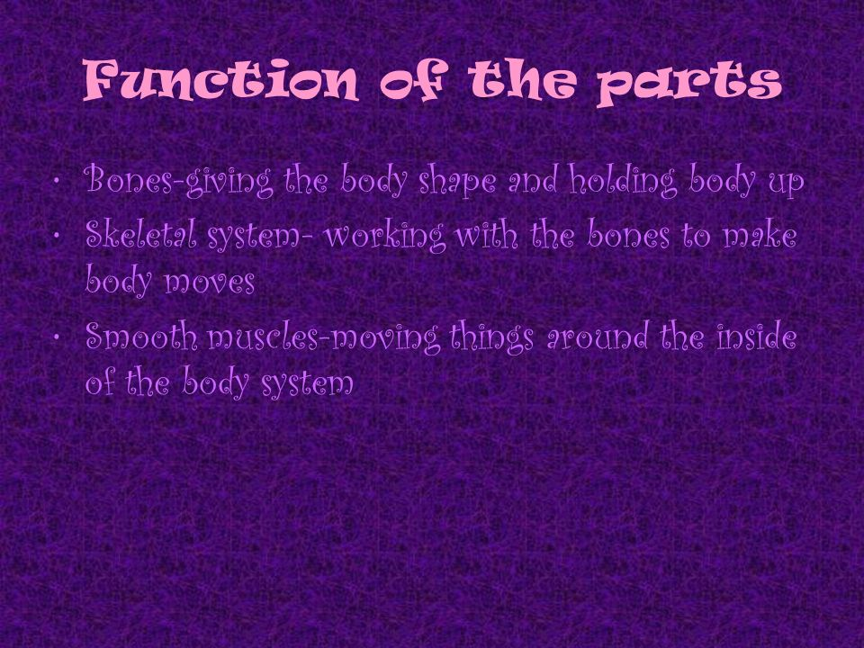 muscular- skeletal system diseases and disorders - ppt download, Muscles