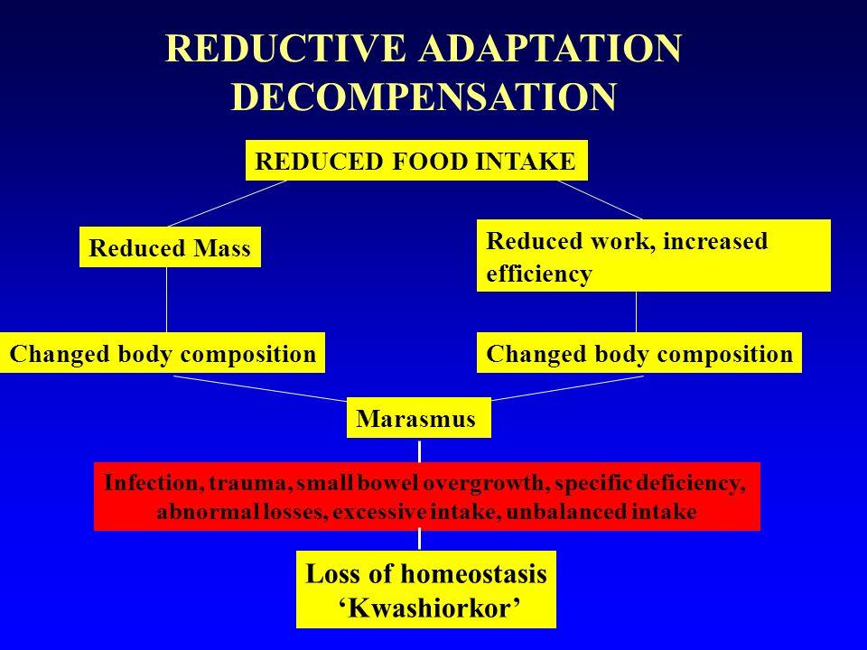 REDUCTIVE ADAPTATION DECOMPENSATION